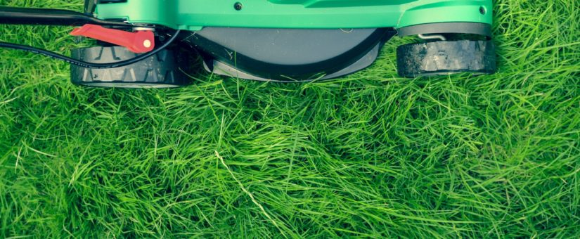 Top 3 Types of Lawn Mowers for Tackling Hills